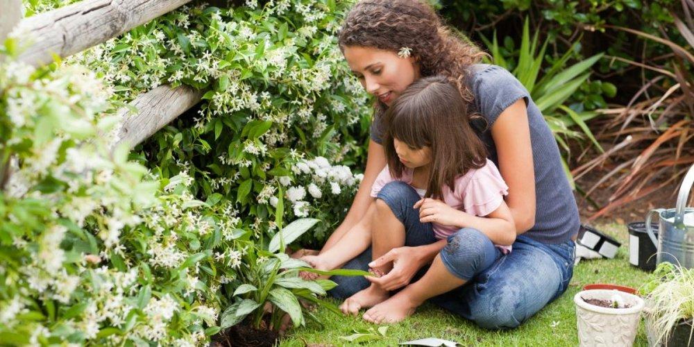 Дачный отдых с ребенком в летнее время