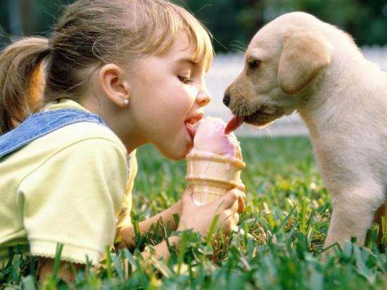 Дети в доме – животных не заводить? 1
