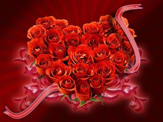 Лучшие цветы для подарка