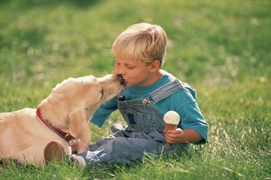 Нужно ли ребенку общение с собакой3